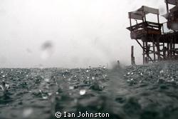 Hey its raining ! I tried lots of ways to capture the fe... by Ian Johnston