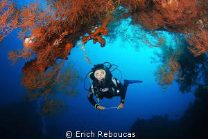 My wife and the corals around the Liberty wreck by Erich Reboucas
