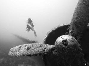 Airplane Wreck by Rico Besserdich