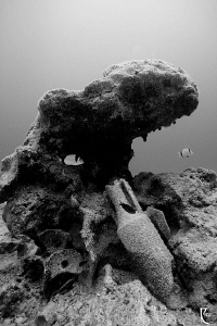Ancient amphora ( dated to 500 BC ) . Taken in B/W using ... by Rico Besserdich