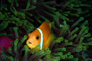 :)