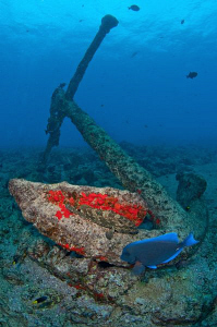 Anchor, Grouper & Blue Tang on the China wreck, Ascension... by Paul Colley