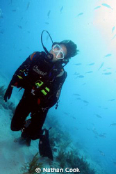 Shallow dive in Marathon Key, FL. Canon 350D Ikelite hous... by Nathan Cook