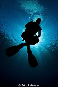 The Zen Diver II by Erich Reboucas