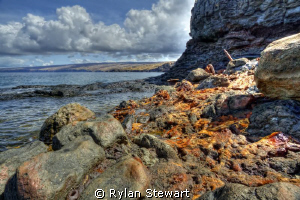 Scrap iron thrown over the cliff slowly rusts and melts i... by Rylan Stewart