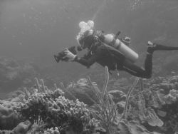 Diver taking video in Bonaire by Kelly N. Saunders