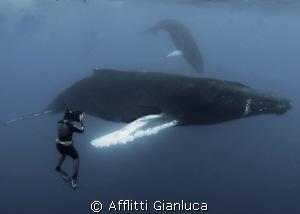 """big"" meeting by Afflitti Gianluca"
