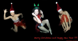 Merry Christmas and Happy New Year !!!! by Lucie Drlikova