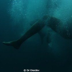 There photos were captured recently on Lizard Island. I w... by Caitilin De Berigny Wall