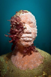 Grenadian sculpture of young boy with pink sponges and tu... by Jason Decaires Taylor