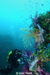 This shot was taken in Truk Lagoon   CCR Diver Gayle Lask... by Ken Thate