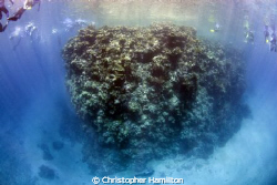 world's end.... againcourt reef GBR by Christopher Hamilton