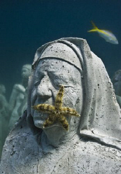 Sculpture from the MUSA collection. by Jason Decaires Taylor