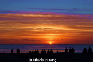 PEACE May peace in your mind and a happy and healthy new... by Mickle Huang