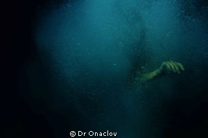 Went for a dive on Lizard to capture some sea slugs. I to... by Dr Onaclov