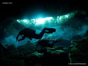 Cenotes by Bea & Stef Primatesta