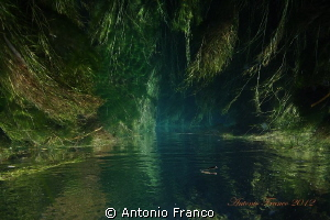 Upside view of Chidro river by Antonio Franco