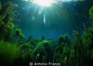 Chidro River by Antonio Franco