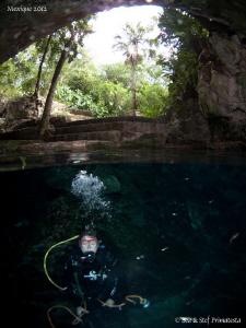 Dive the jungle ;-) by Bea & Stef Primatesta