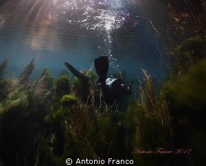 Dive into the Chidro River. Natural light by Antonio Franco