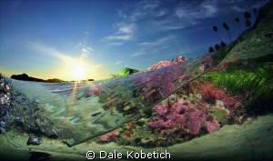low tide afternoon laguna Beach...home made dome and hous... by Dale Kobetich