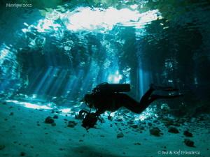 Cenote. by Bea & Stef Primatesta