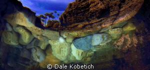 reflections from below by Dale Kobetich