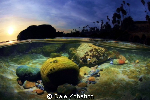 in the shallows laguna beach sunset by Dale Kobetich