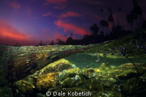after sundown...night lagoon by Dale Kobetich