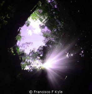 Trasicion by Francisco F Kyle