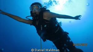 Jamaican Mermaid Diver by Daniel Waldman