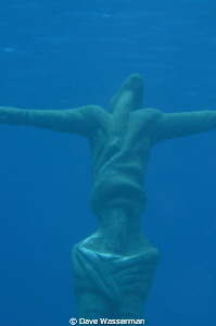 I ran into this guy glaring up at the surface..seemingly ... by Dave Wasserman