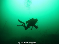 Picture taken at Muyal-Ha cenote in playa del carmen mexico by Ramon Magana