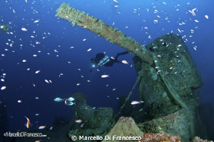"""Bolzaneto"" wreck  Ligurian Sea  fm - 45  to - 60 Levan... by Marcello Di Francesco"