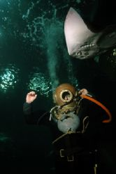 Historic diving gear and ray. It really is great fun divi... by Grant Kennedy
