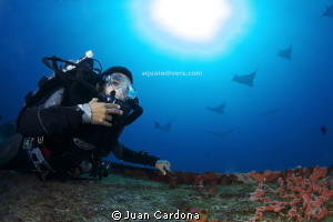 Eaglerays ..cancun´s wreck dive by Juan Cardona