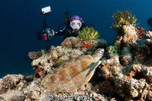 House reef on Mataking Island by Martin Ferak