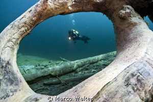 The picture is taken in the lake 'Samaranger See', Austri... by Marco Walter