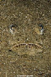 la maschera di sabbia by Salvatore Ianniello