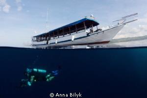 Into the blue... by Anna Bilyk