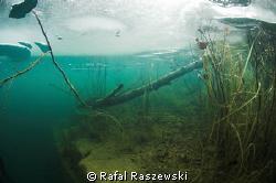 ice diving by Rafal Raszewski