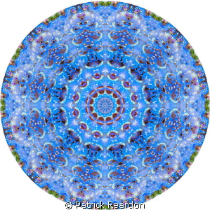 Kaleidoscopic image created from a shot of a blue dragon ... by Patrick Reardon