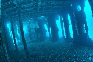 Inside the wreck (HDR) by Matthew Fischbach