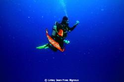 Wide Open Ocean ,Australia ,Melbourne EOS 7D by Linley Jean-Yves Bignoux