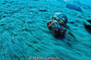 panning in camera then HDR processing by Marco Gargiulo