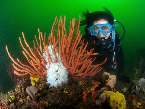 Shirley and squid eggs, Bare Island by Doug Anderson