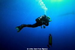 A diver waiting for deco to stop after a 68 m dive  ,Maur... by Linley Jean-Yves Bignoux
