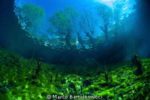 Posta Fibreno Lake- Lazio- Italy by Marco Bartolomucci