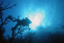 Shot taken below dive buddy on THe Brothers, Red Sea, Egy... by Simon Trickett