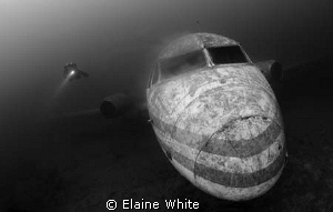 Passenger aircraft with Diver. Natural light Capernwray by Elaine White